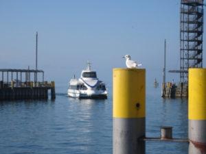 Katamaran im Hafen von Friedrichshafen